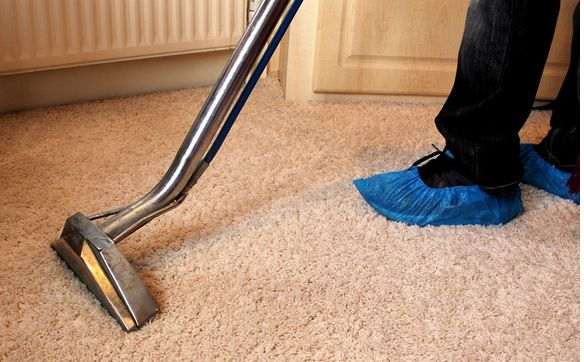 Proficient Carpet Cleaning